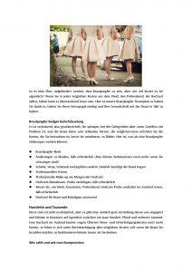 Abend Schön Polterabend Kleider Vertrieb15 Genial Polterabend Kleider Galerie