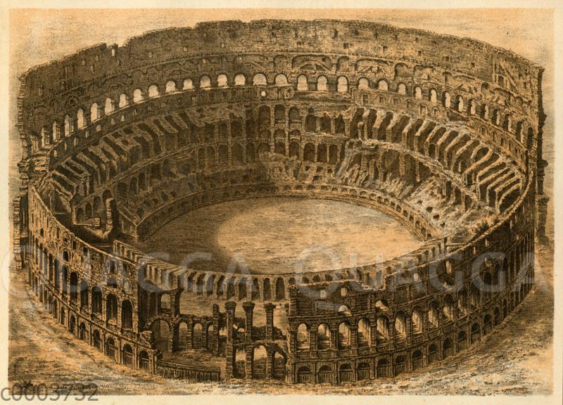 Colosseum  Quagga Illustrations
