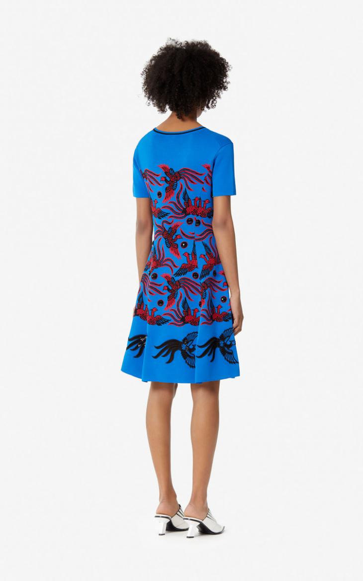 Damen Jacquardkleid 'Flying Phoenix' French Blue  Kenzo