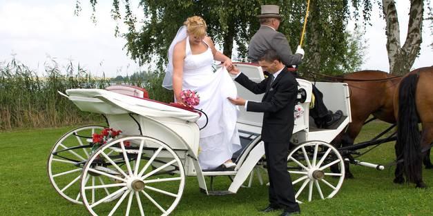 Hochzeitskutsche Ihren Fiaker Für Die Trauung Mieten