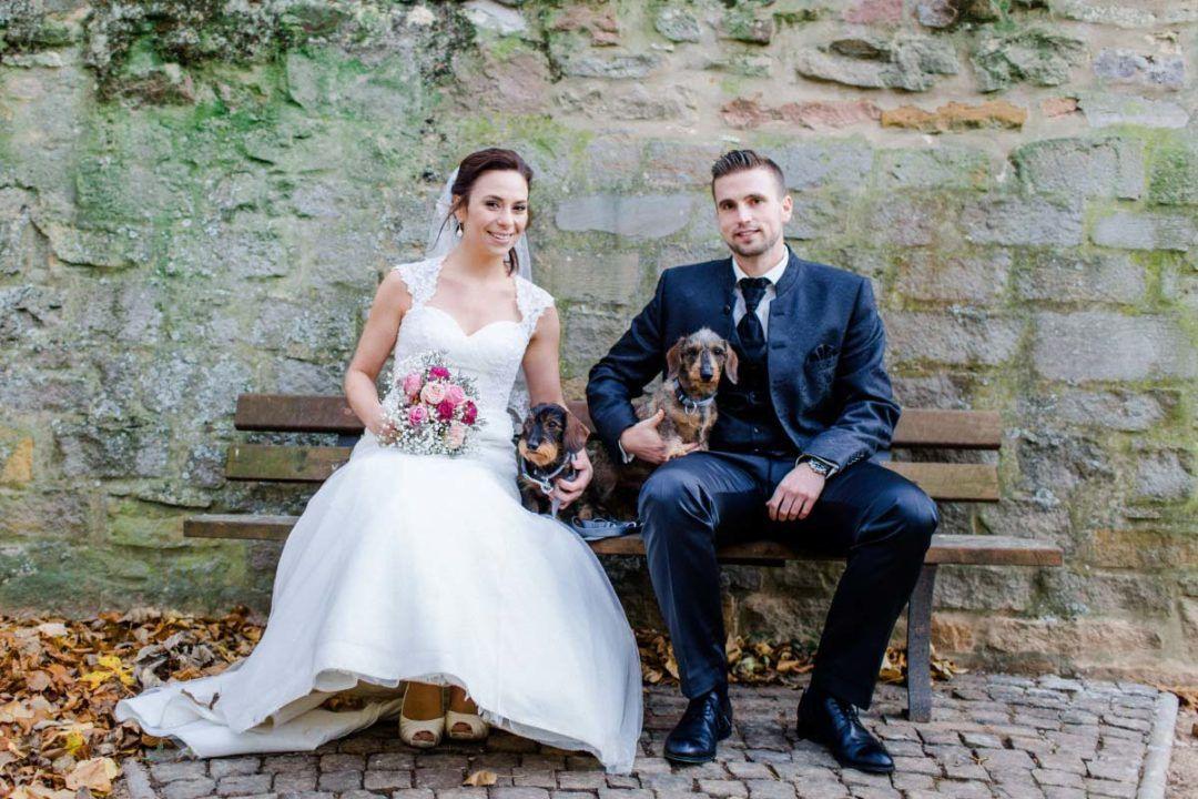 So Klappt Es Mit Dem Hund Bei Der Hochzeit  Hochzeit