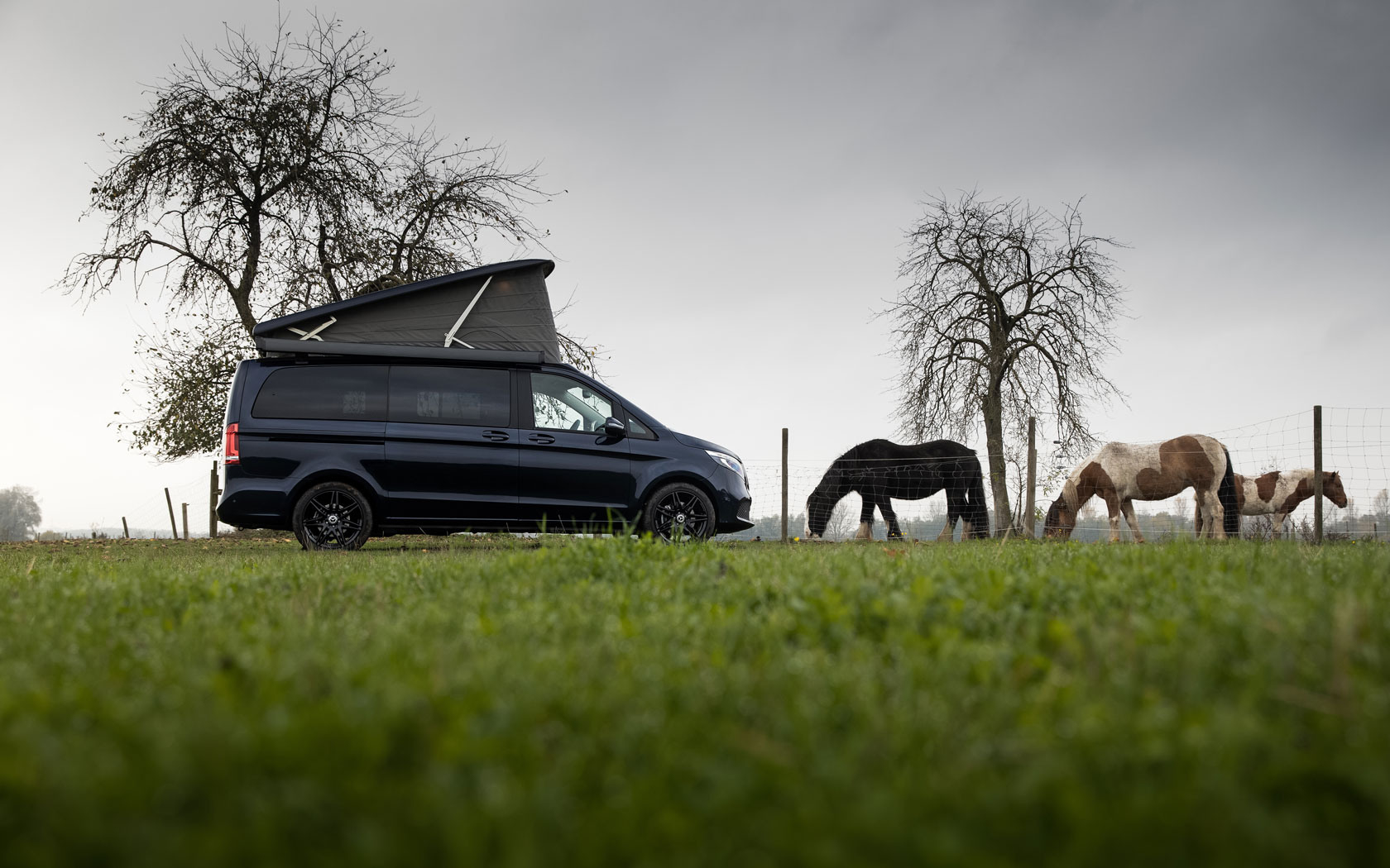 Mercedesbenz Marco Polo На Виставці Caravan 2020